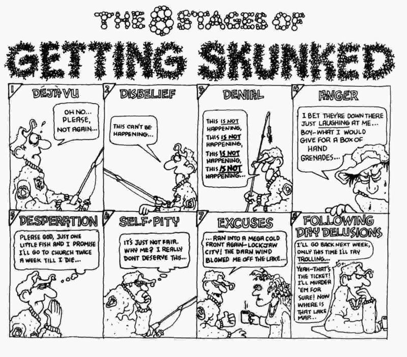 8 Stages of Getting Skunked.JPG